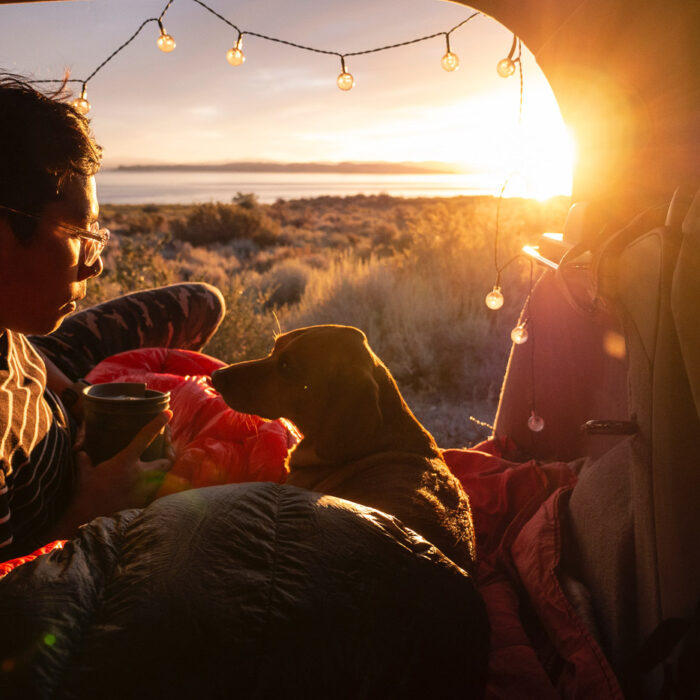 Ultimate Guide to Camping With Dogs – Camping Essentials and Tips