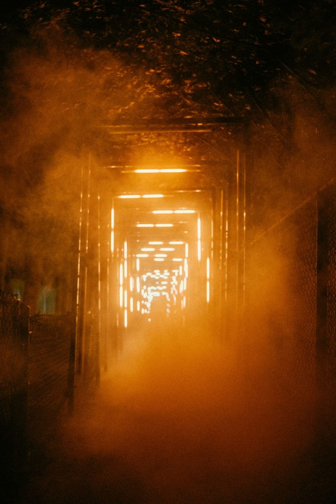 Light display surrounded by fog at the Terra Lumina event at the Toronto Zoo