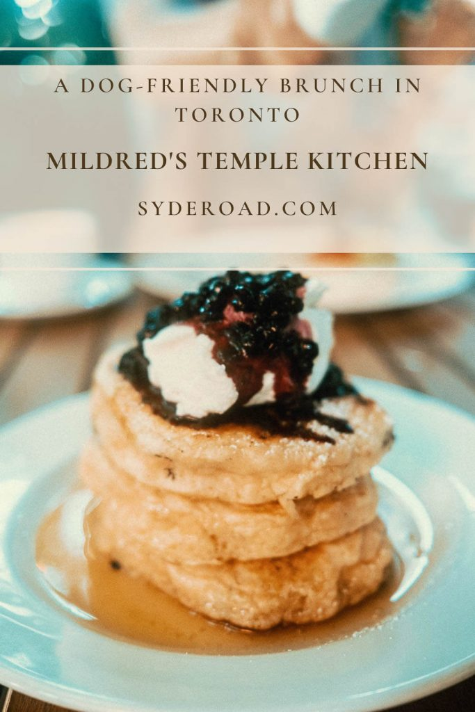 Stack of pancakes topped with wild blueberry compote - a specialty at the dog-friendly Mildred's Temple Kitchen in Toronto