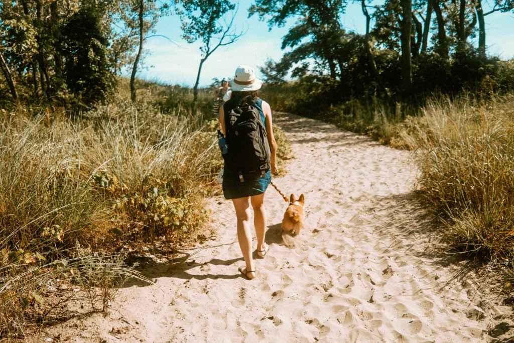 Woman wearing a black backpack walking up a sandy hill with a corgi on a leash at Long Point Provincial Park