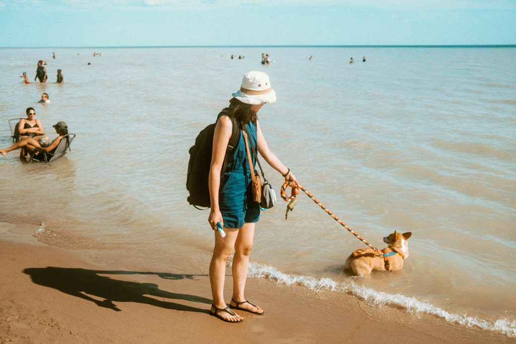 Woman in a dark blue dress holding a harnessed dog that is wading into Lake Erie at Long Point Provincial Park