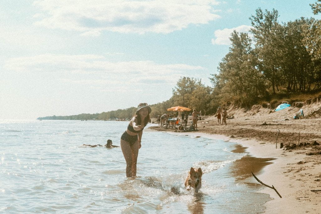 Woman standing in the water tossing a stick while corgi runs to chase the stick in the waves