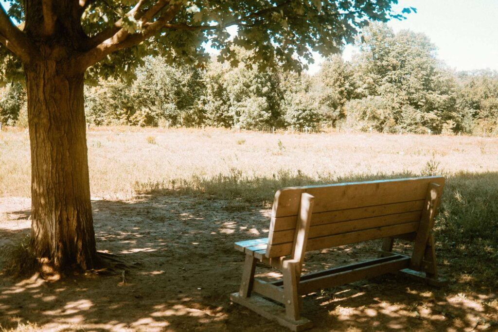 Shaded bench at the open play area